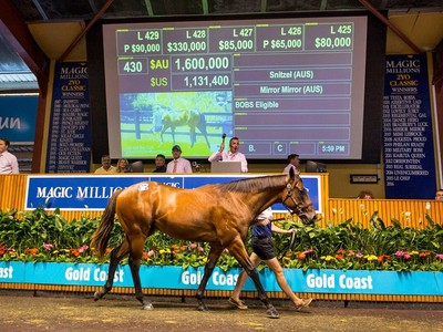 Star Studded Group on Offer at 2021 Magic Millions Gold Coas ... Image 2